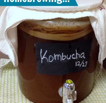 How to Make Kombucha from Nutty About Health